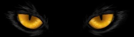 cateyes_black_dark